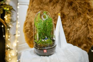 5 Idées cadeaux de Noël